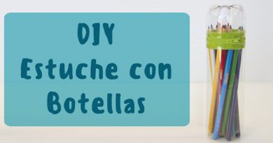 estuche botella diy